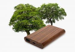Wood - Powerbank